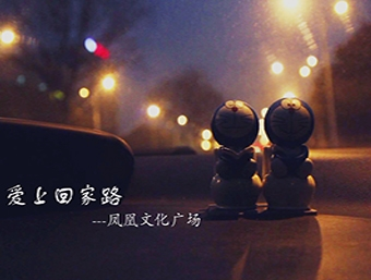苏州凤凰文化广场视频图