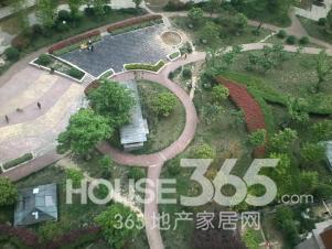 蓝鼎观湖苑实景图