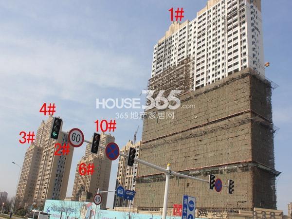 中海凤凰熙岸1-4#、6#、10#楼工程进度(2015.2)