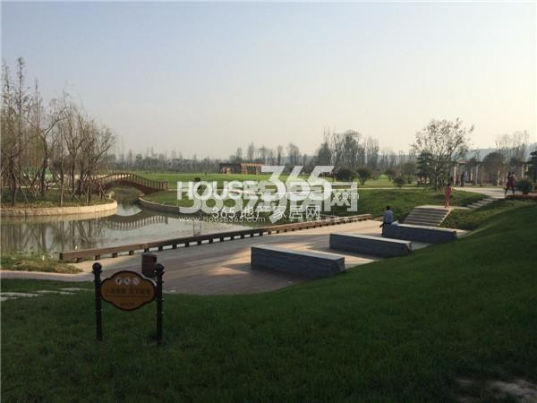 乐华城大湖小墅实景图(2014.10.26)