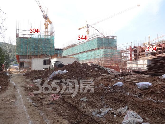 高科荣境在建楼栋实景图(10.25)