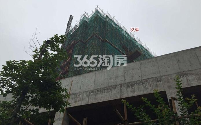 高科荣境二期小高层楼栋实景图(6.11)