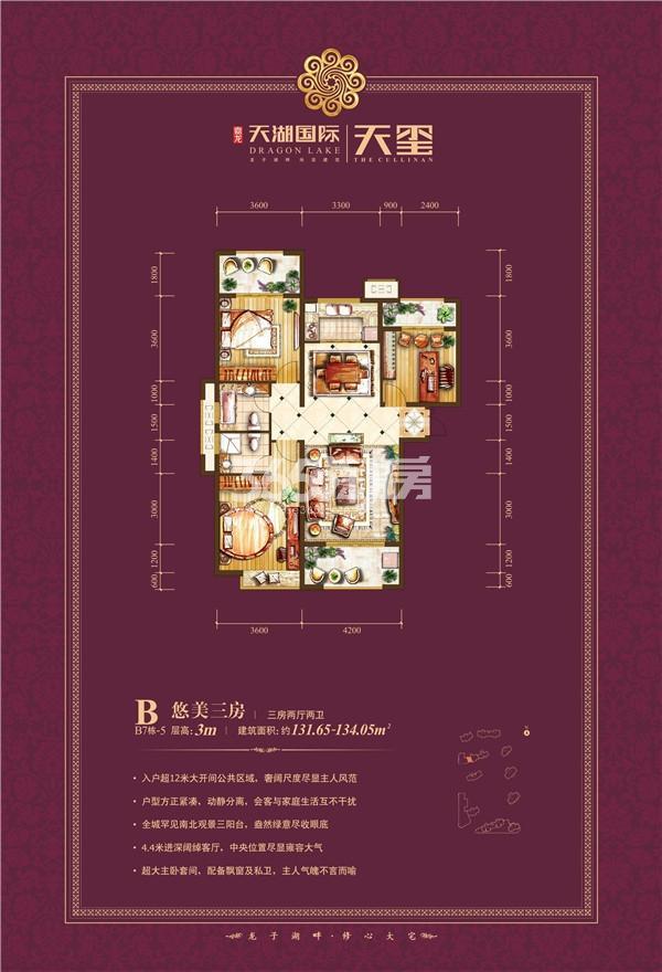 天湖国际户型图B7-5