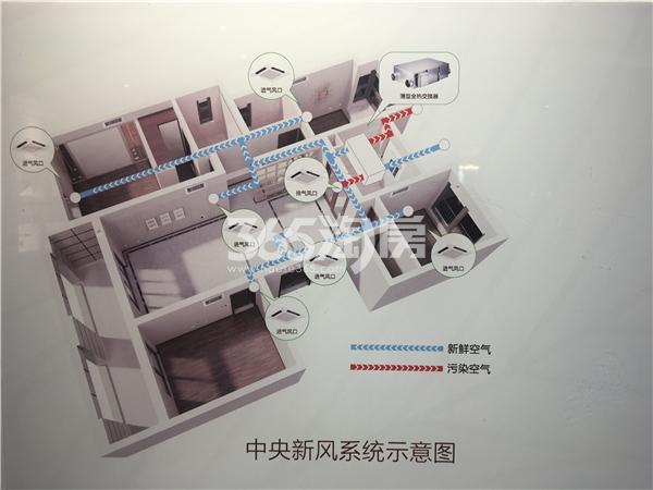 金隅紫京府中央新风系统示意图(8.6)