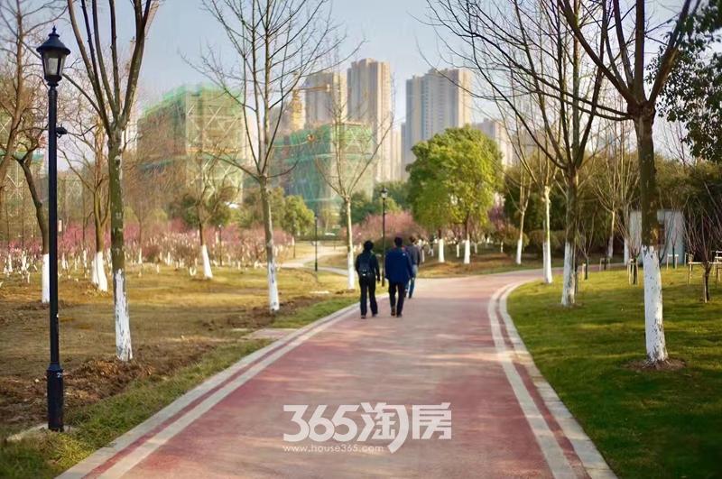 信达公园里周边配套实景图(2017.3)