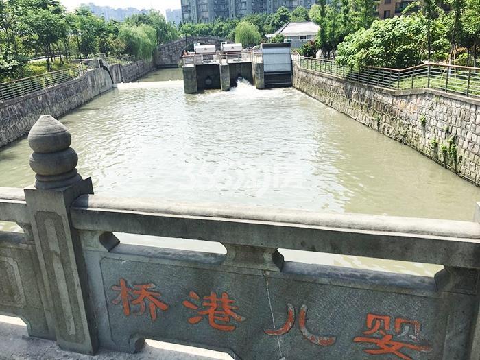 2017年6月初融信公馆ARC周边河道