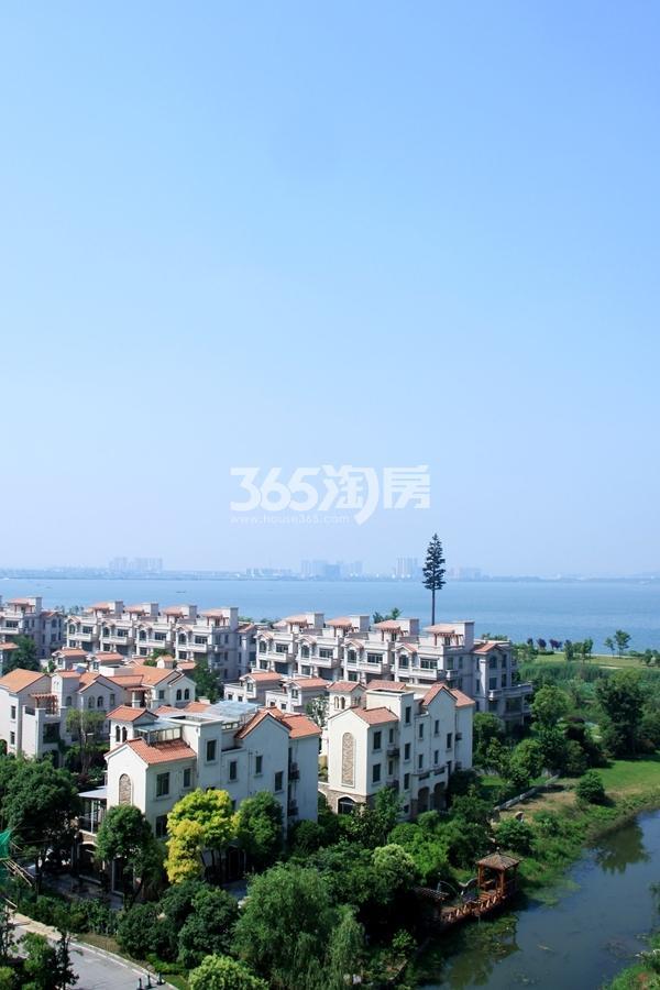 碧桂园观澜湾实景图